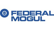 Federal-Mogul logo blue